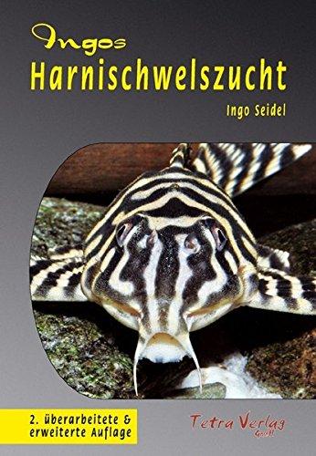 Ingos Harnischwelszucht