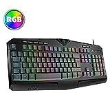 Gaming Keyboard UK【RGB & 25-Key Anti-Ghosting】VicTsing USB Wired Keyboard with 8 Independent Multimedia...