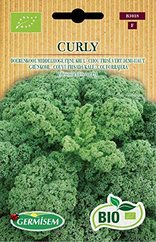 Germisem Organisch Curly Boerenkool Zaden 2 g