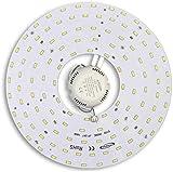 Universo – Circolina corona LED 5730 módulo circular de repuesto neón para plafones luz blanca fría 6500 K 46 W 265 V ultra brillante