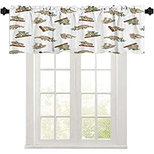 Short Straight Window Valance, Koala Pattern Design Mammals of The Nature Nursery Decor Australian Animals Baby Themed, 50″ W x 18″ L Curtain Valance Window Treatment for Living Room, Grey White