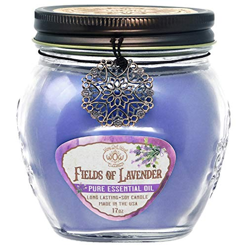 Way Out West Aromatherapy Scented Candles -Stress Relief & Relaxation, 60 Hour Long Burning Natural Candle - USA Made - 100% Real Lavender Essential Oils - Soy Wax Blend Fragrant Jar Candles