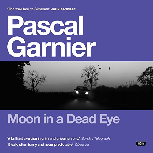 Moon in a Dead Eye audiobook cover art