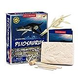 ZXCWE Kit De Excavación De Dinosaurio DIY, Juguetes De Excavación Arqueológica Fósil De Dinosaurio Kit De Excavación De Dinosaurio Esqueleto 3D para Niños Niñas