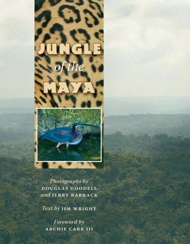 Jungle of the Maya
