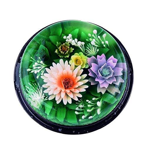 11pcs / Set 3D Gélatine Jelly Art Pudding Décoration Florale Moule Outils D'aiguille Seringue De Cuisson En Acier Inoxydable Buse Accessoires Kit