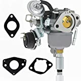 unnknown 541-0765 Carburetor for Cummins 5410765 541-0765 48-2042 Onan 5500 Grand Marquis
