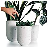 AUBURY White Indoor Plant Pots - Set of 3 Pots for Plants with Drainage Holes, Sturdy Yet Lightweight for Easy Moving, Modern Flower Pots for Indoor Gardens, Succulent Planters or Hanging Planters