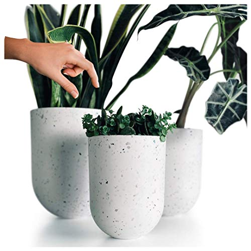 AUBURY & CO White Indoor Planter Pots - Set of 3 Plant Pots with Drainage Holes - Sturdy yet Lightweight for Easy Moving - Modern Flower Pots for Indoor Gardens, Succulent Planters or Hanging Planters
