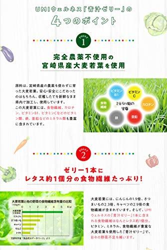 青汁ゼリー単品(1箱30本入り)