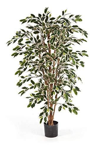 artplants.de Set 2 x Ficus Artificial Avellino con 720 Hojas Verdes y Blancas, 150cm - 2 Unidades de árbol Decorativo - Planta Textil