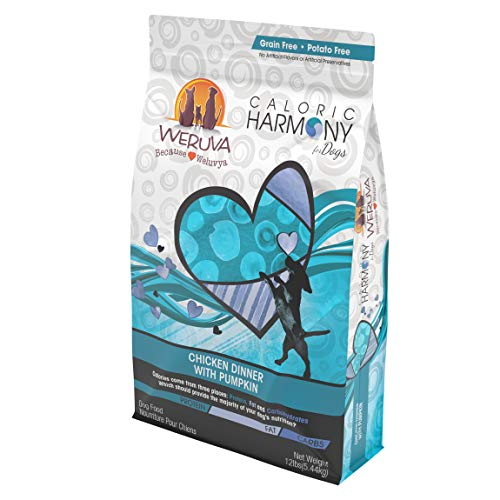 Weruva Caloric Harmony Natural Dog Food