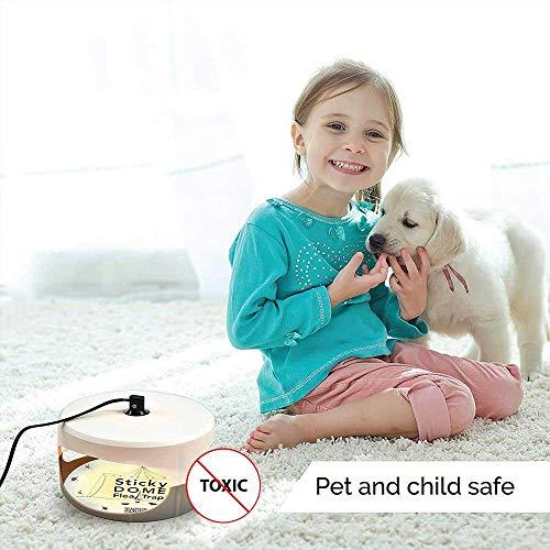 KOBWA Flohfalle, Elektronische Sticky Dome Flohfalle mit 2 Sticky Discs und 2 Glühbirnen, Schädlingsbekämpfung für Haus und Haustiere - 2