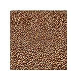 Semillas de mijo a granel, mijo amarillo, mijo, granos, semillas de mijo pequeño, 300 granos