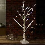DAXGD Lámpara de escritorio LED Árbol de abedul blanco, 23.6 pulgadas, perfecto para el hogar Fiesta de fiesta Boda de Navidad (Luz Multicolor)