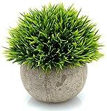 Velener Mini Plastic Fake Green Grass Plants with Pots for Home Decor Indoor