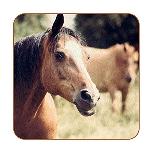 Bennigiry Juego de 6 manteles individuales de cuero con diseño de caballo en el bosque
