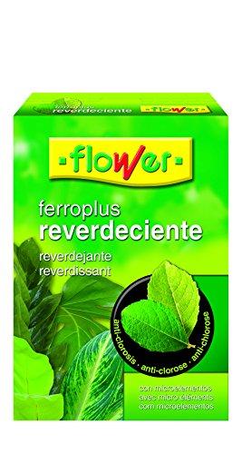 Flower 15503 Ferro-Plus Reverdissant 1 kg