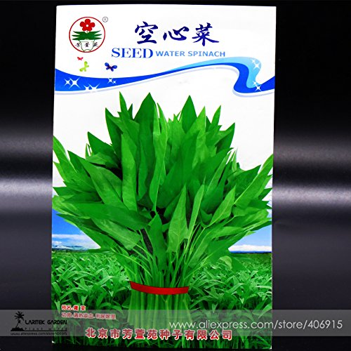 Rare banane vert tomate graines Fruits vegetable Seeds, 20 graines, végétales organiques naturelles iwsc137