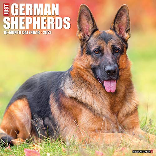 Just German Shepherds 2021 Wall Calendar (Dog Breed Calendar)
