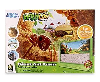 Best ant farms Reviews