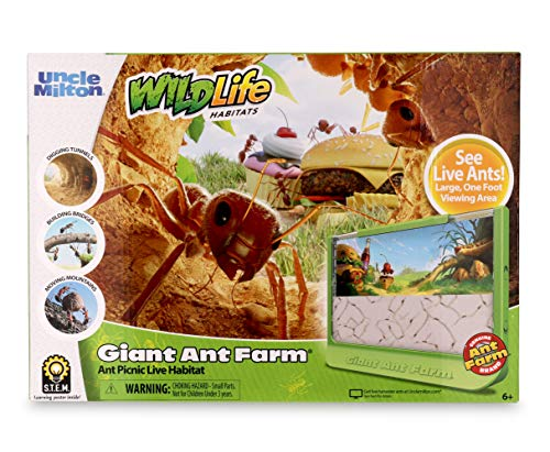 Uncle Milton Giant Ant Farm - Large Viewing Area - Care for Live Ants - Nature Learning Toy - Science DIY Toy Kit - Great Gift for Boys & Girls