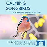Calming Songbirds - Nature Sounds Recording Of Bird Calls - For Meditation, Relaxation and Creating a Soothing...