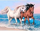 ZXlDXF Pintura por números para adultos y niños, principiantes, caballo junto al mar, pinturas acrílicas para principiantes y pintores experimentados, 40,6 x 50,8 cm, sin marco