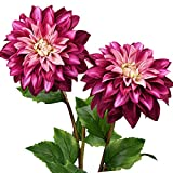 FLOWRY Dahlia - 2 flores artificiales de seda para dalia, flores falsas para arreglos ramos de boda, primavera, Pascua, decoración (rosa púrpura)