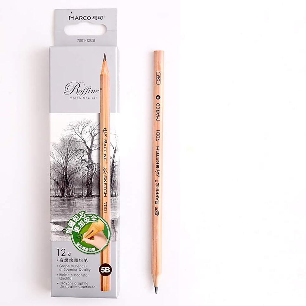 Sketch Pencil Log Pencil Drawing Pencil Art Pencils Sketch Travel Precision Graphite Pencils for Adults 12 Piece (5B)