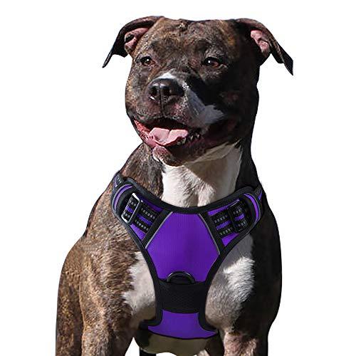 Eagloo Hundegeschirr Geschirr für Große Hunde Anti Zug Mittelgroße Brustgeschirr No Pull Sicherheitsgeschirr Auto Dog Harness Labrador Welpengeschirr Joggen Ausbruchsicher Weich Gepolstert Lila XL