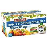 ANDROS - Compote de Fruit - Gourde Recyclable - Sans Sucre Ajouté - Goût Pomme + Pomme/Poire + Pomme/Fraise + Pomme/Banane - Idéal pour le Goûter des Enfants et des Bébés - Lot de 20