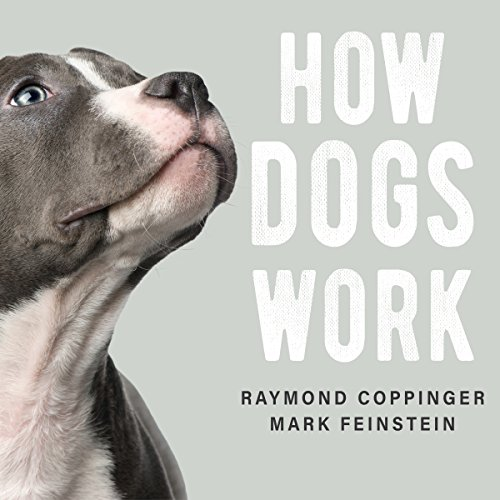 How Dogs Work audiobook cover art