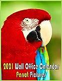 Parrot Pictures 2021 Wall Office Calendar: Official Parrot Daily Mounth Calendar