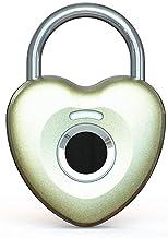 Vingerafdruk hangslot Smart Touch Lock Metalen Waterdicht Anti-Diefstal Intelligent Keyless voor Gym Locker, School Locke...