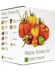 Plant Theatre Zestaw Wacky Tomatoes – 6 fantastycznych odmian do uprawy, wspaniały prezent