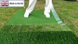 Golf Swing Training and Practice Mat - 3 Surface - Ball Striker Pro - with Range Style Tee Holder