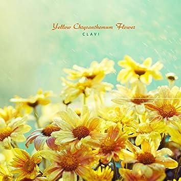 노란 국화꽃