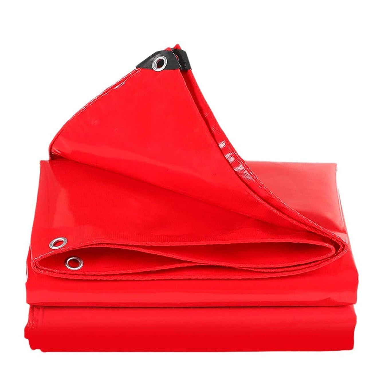 対応ショップストッキング日よけ布厚いキャンバス防水布防水日焼け止め防水シート車の防水シート日除けオーニング布 (Size : 3x6m)