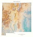 Raven Maps New México mapa topográfico de pared, impresión laminada