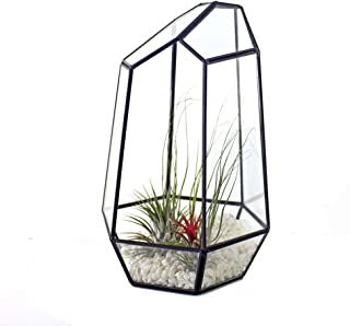 Iusun Geometric Fleshy Glass Flower House Crafts Greenhouse Flower Pot for Cacti Plants Patio Home Office Garden Indoor/Outdoor Decor 6.3x6.3x10.24'' - Ship from USA