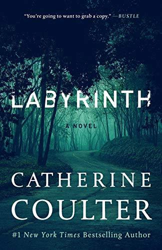 Labyrinth (23) (An FBI Thriller)