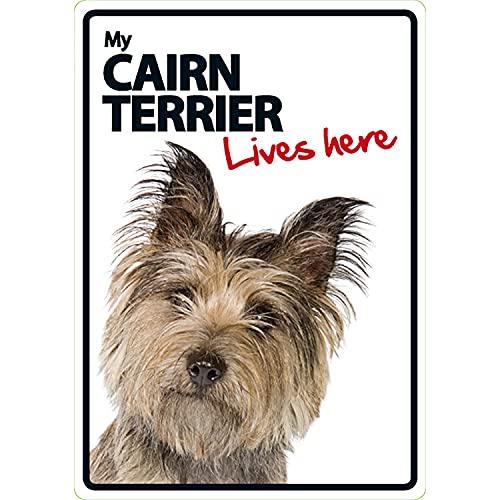 Plaque magnétique et Acier, Cairn Terrier Lives Here