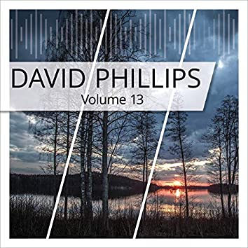 David Phillips, Vol. 13
