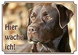 Hundeschild Labrador Retriever - wetterfestes Premiumschild aus Metall, DIN A4 thumbnail