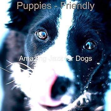 Puppies - Friendly