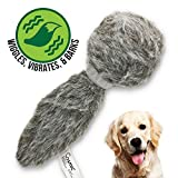 Interactive Dog Toys Review and Comparison