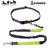 YIHATA Retractable Dog Leash with Handle 16 feet Strong Nylon Tape one-Handed Brake Pause Lock (Green)