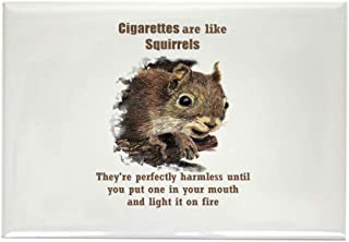 CafePress Cigarettes Quote Fun Squirrel Magnets Rectangle Magnet, 2