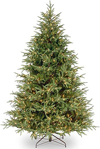 National Tree Company 'Feel Real' Pre-lit Artificial Christmas Tree   Includes Pre-strung Multi-Color LED Lights and Stand   Frasier Grande Fir - 6.5 ft
